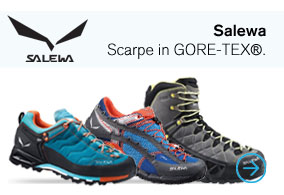 Salewa Goretex Scarpe it