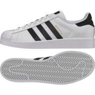 Sportarten > Fitness > Schuhe Fitness / Halle >  Adidas Originals Superstar Sneaker Herren